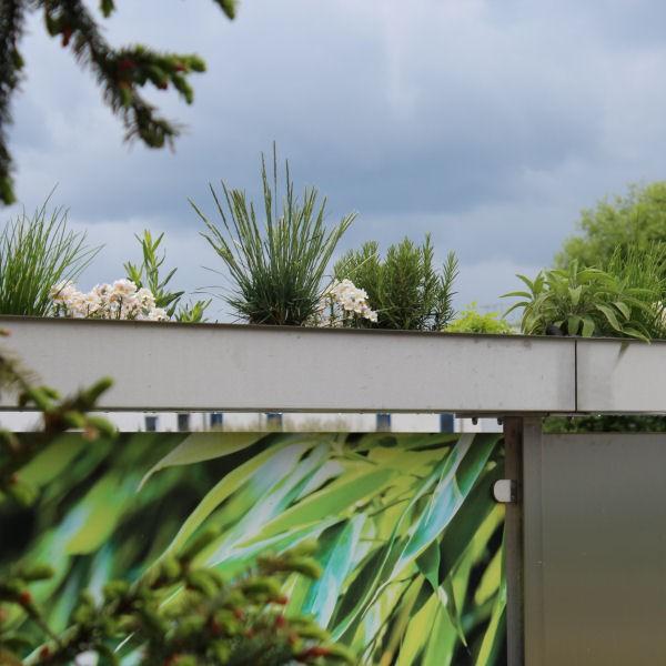 pflanzschale aus edelstahl als zubeh r f r den gartenzaun aus glas etg. Black Bedroom Furniture Sets. Home Design Ideas